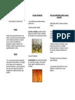 Parte interna.doc