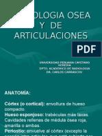 radiologia osea y articular basica