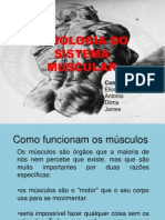 fisiologiadosistemamuscular-100511073106-phpapp02