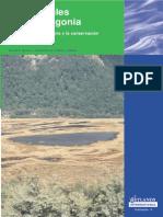 Turbales de La Patagonia - Parte I