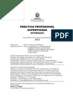 Programa de Practica Profesionaldic2013-1