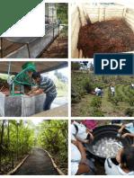 Manejo Integral de Procesos Productivos y Ambientales