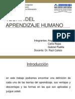 7. Teoría del Aprendizaje Humano