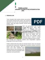 Materi Budidaya Padi Organik SRI (NOSC_NAGRAK)