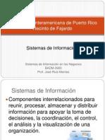 badm-3900sistemasinformacion-091030211121-phpapp02