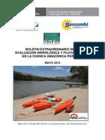 Boletin Amazonico 05-2013.PDF