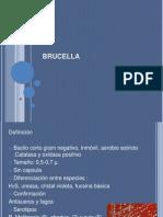 BRUCELLA 3 final.pptx