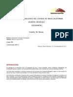 Cuadro de Rocas.docx