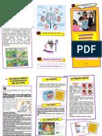 Actividadn2 Produccindelfolleto Copia 110520191428 Phpapp02