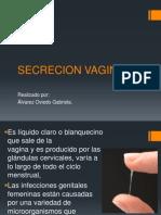 Secrecion Vaginal