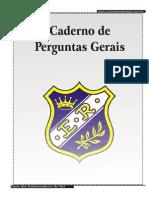 Cad Erno Perguntas Gerais PDF