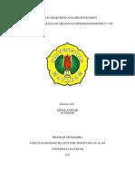66329711 Laporan Praktikum Analisis Instrument