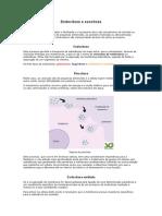 Endocitose e Exocitose
