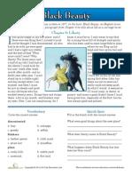 Black Beauty Reading Comprehension Worksheet Copia