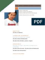 Modelo Dfe Curriculum