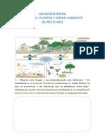 28413317 Evaluacion Los Ecosistemas
