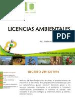 Gestion Integral 2013 Licencias Ambientales