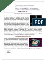 LIQUIDO AMNIOTICO.docx