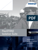 Schlumberger_Flex Stone Isolation Suite