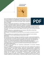 5-animalesponzoosos-110926075157-phpapp01