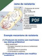 Antibiotice mecanisme rezistenta