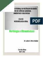 Aula 02 Morfologia e Ultraestrutura