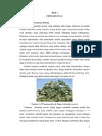 Pra Rancangan Pabrik Biodiesel Jarak