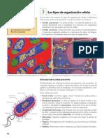 Páginas desdeLIBRO.pdf