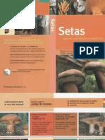 Botanica - Flora Iberica - Libro Guia - Setas (Everest 2006)OCR.pdf