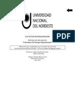 Werther Informe PDF
