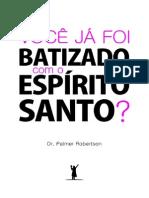Batismo Com o Espirito Santo Palmer Robertson