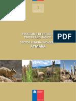 201210041825340.ProgAymara-3web