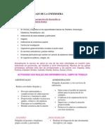 CAMPOS DE TRABAJO DE LA ENFERMERA.docx