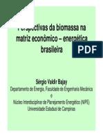 Energia Perspectivas Biomassa Matriz Economico