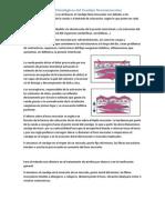 Efectos Fisiológicos del Vendaje Neuromuscular