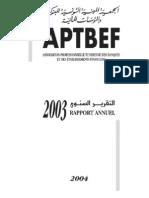 APBTRAPPORTFRANCAIS2004