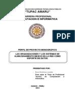 Perfil de Proyecto Cableado y Redes