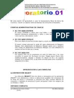 Practica 01 -2013