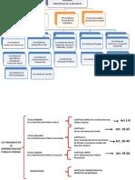 estructura organica.pptx