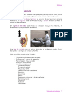 valoracion_embarazo