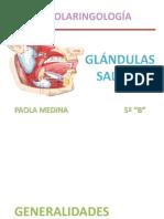 glndulassalivalesembriologaanatomayfisiologa-100718035842-phpapp02 (1)