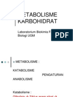 Carbohydrates II Metabolism