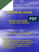 Entorse Si Luxatii