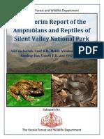SVNP Report Final