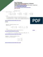 matrices determinantes sistemas  matemáticas  ejercicios resueltos de selectividad PAU