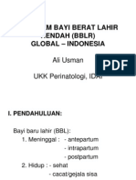 01. PROBLEM BAYI BERAT LAHIR RENDAH (BBLR) GLOBAL–INDONESIA