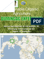 Dumingag Data