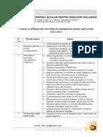 Directii Si Strategii 2012-2013