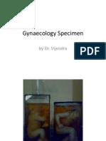 Gynaecology Specimen.pptx