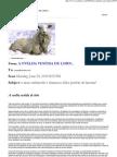 Ovelha Vestida de Lobo - Caio Fabio